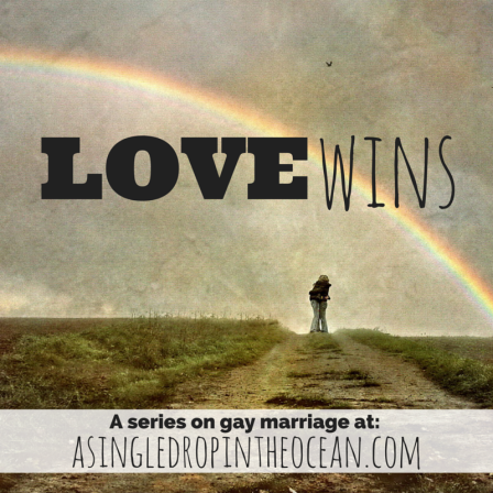 Love Wins A series on gay marriage
