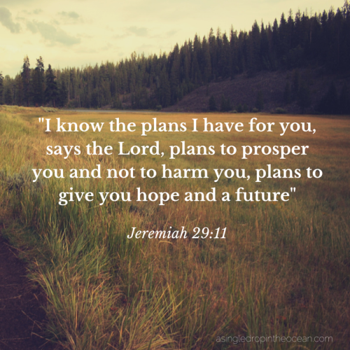 I know the plans I have for you says the Lord